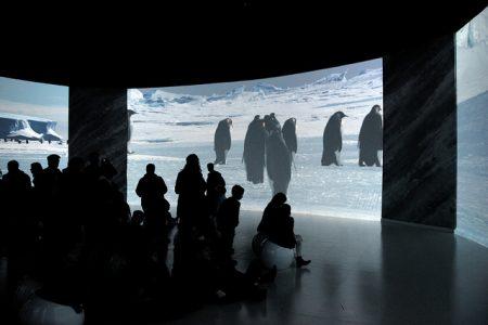 Antarctica – exposition au musée des Confluences