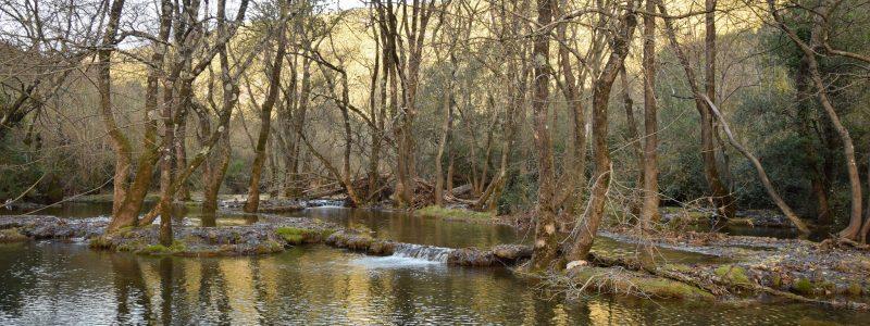 La Buèges : et au milieu se dissimule une rivière