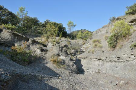 Marnes grises du Callovien à Quissac