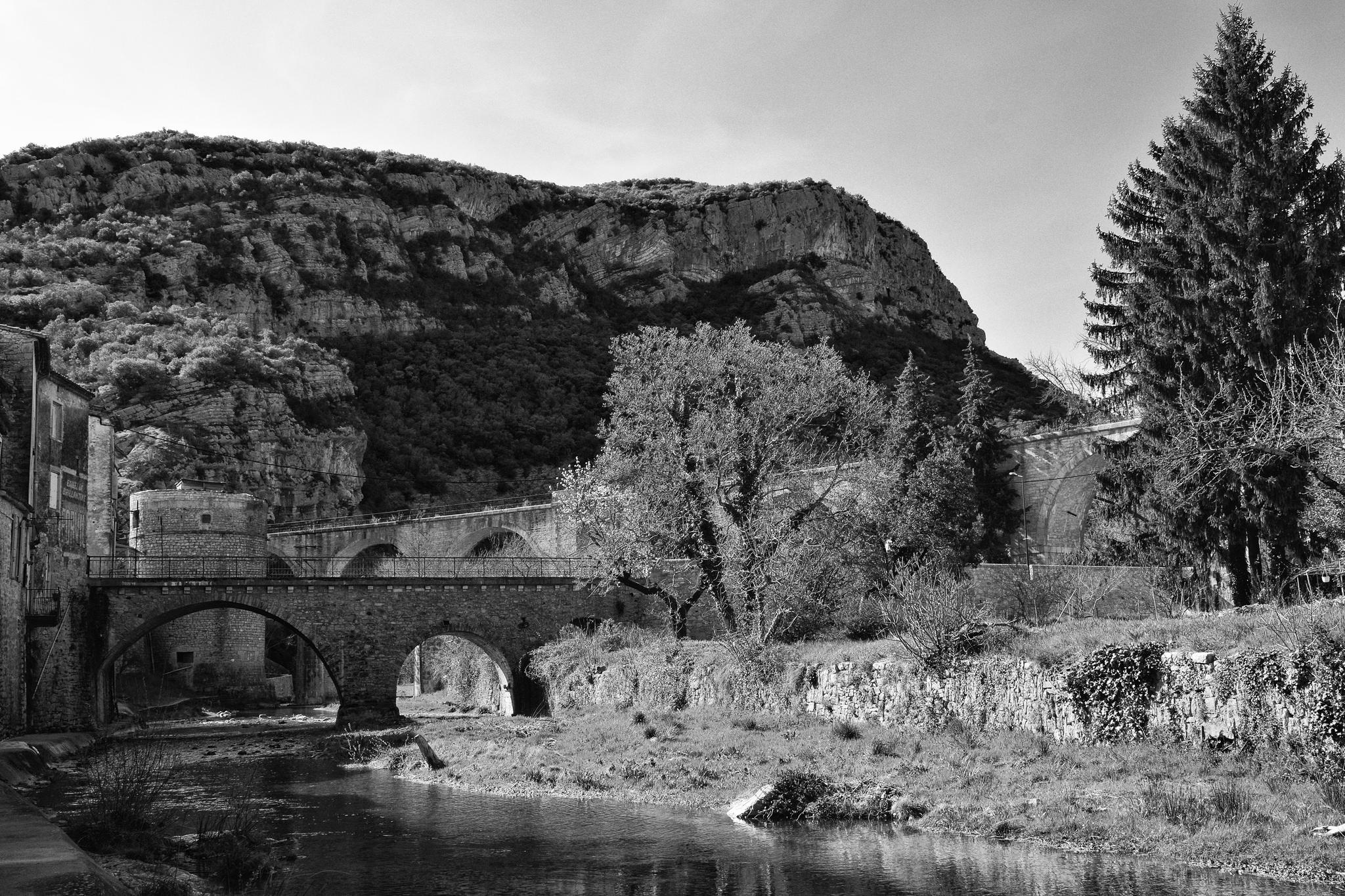 Aux portes des Cévennes : Saint-Hippolyte-du-Fort