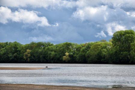La Loire : une promenade de quelque mille kilomètres